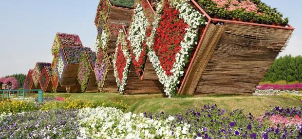 Miracle Garden in Dubai